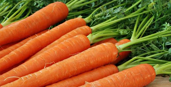 Los Beneficios De La Zanahoria Para Tu Salud Revista Vidasana La zanahoria es la más mineralizante y vitaminizante de todas las raíces, siendo. revista vidasana