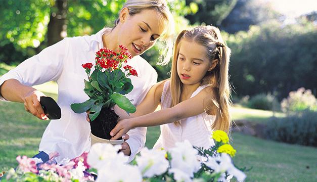 Consejos para que tu jardín siempre esté radiante