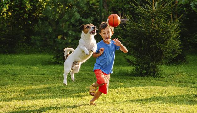 La importancia de las mascotas en el desarrollo los niños