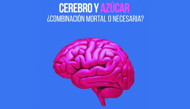 Cerebro y azúcar: ¿Combinación mortal o necesaria?